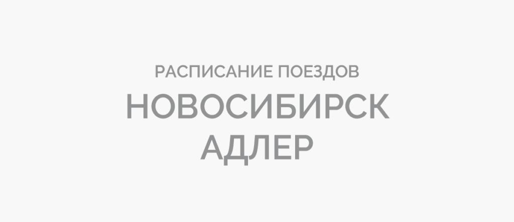 Поезд Новосибирск - Адлер