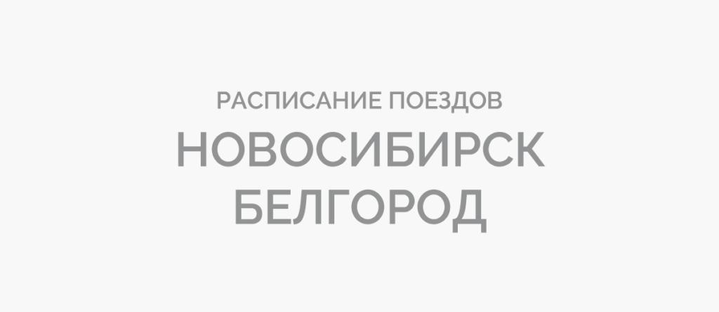 Поезд Новосибирск - Белгород
