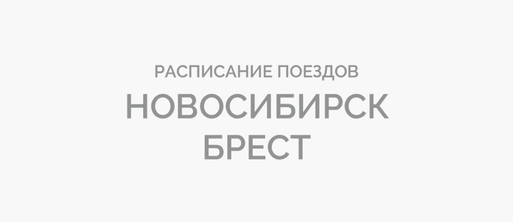Поезд Новосибирск - Брест