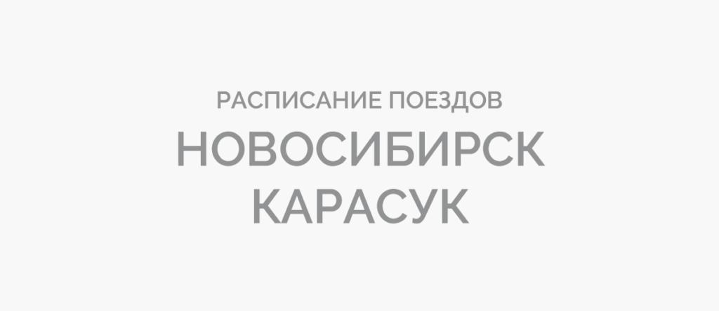 Поезд Новосибирск - Карасук