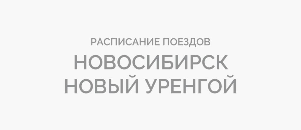 Поезд Новосибирск - Новый Уренгой