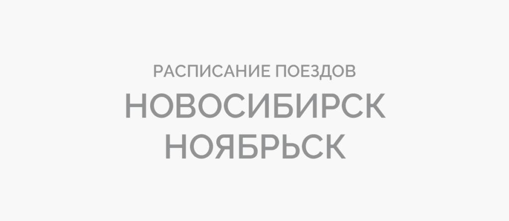 Поезд Новосибирск - Ноябрьск