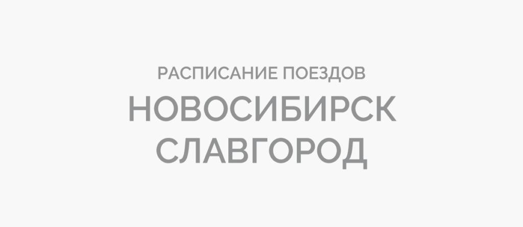 Поезд Новосибирск - Славгород