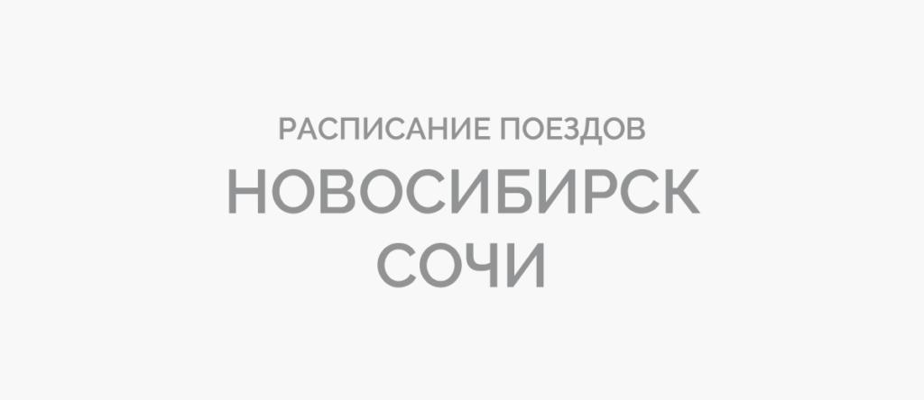 Поезд Новосибирск - Сочи