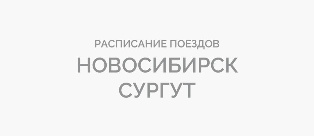 Поезд Новосибирск - Сургут