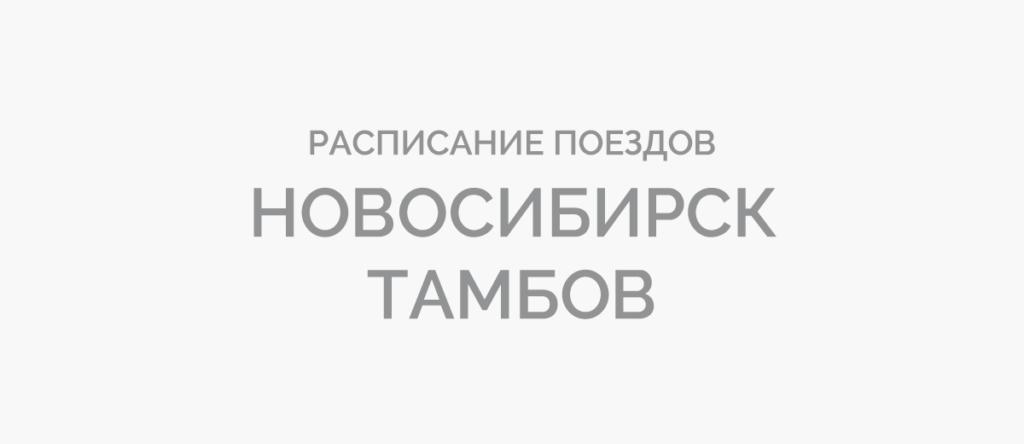 Поезд Новосибирск - Тамбов