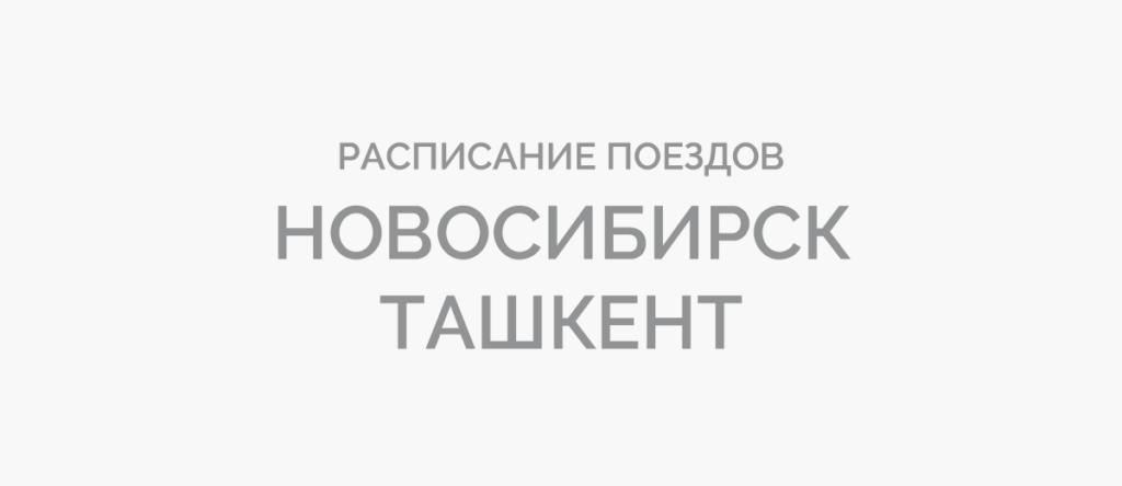 Поезд Новосибирск - Ташкент