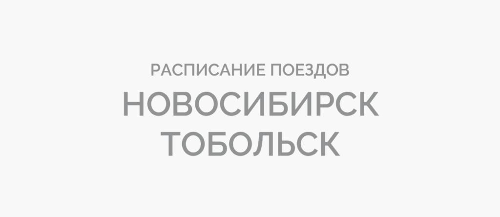 Поезд Новосибирск - Тобольск