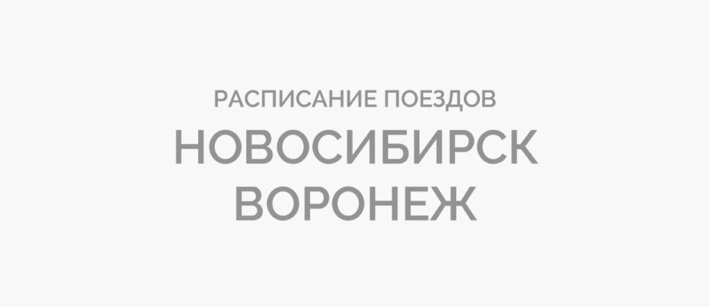 Поезд Новосибирск - Воронеж